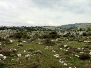 Le plateau de Cavillore
