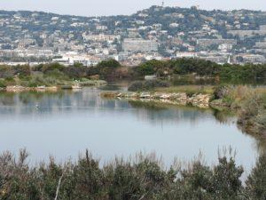 Le lac d'eau salé